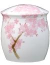 香蘭社吉野桜